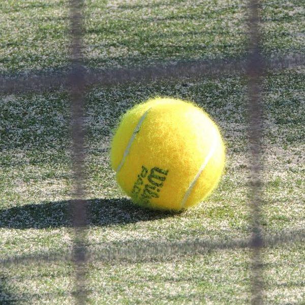 triumf w Wimbledonie