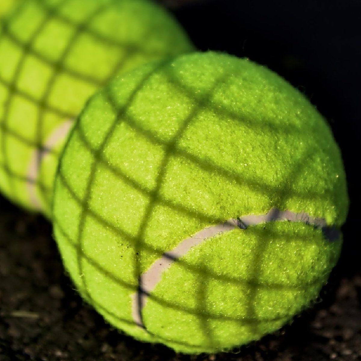 sport to zdrowie - foto